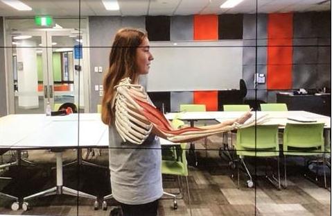 乐卓博大学用VR/AR技术代替教科书